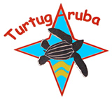 Save Aruba Sea Turtles - click here to find out what you can do to help.